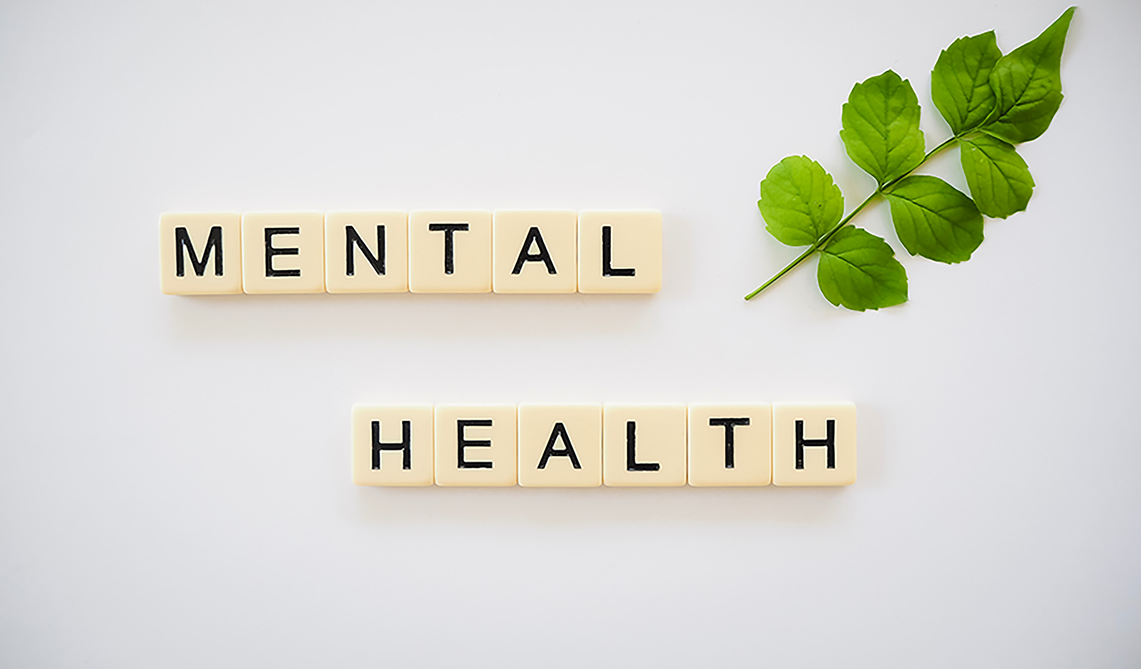 mental health blocks