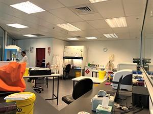 View of laboratory